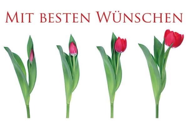 """Karte """"Mit besten Wünschen"""""""